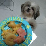 Dogs birthday cakes - happyboy 1st birthday