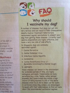 why-should-we-vaccinate-our-dogs
