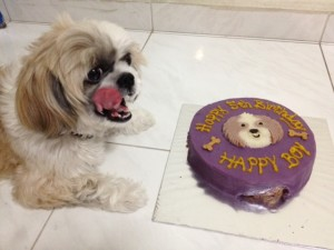 5th birthday cake for dog